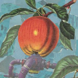 Apple Juice thumbnail